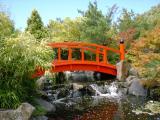 日本庭園の橋