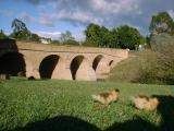 リッチモンド橋